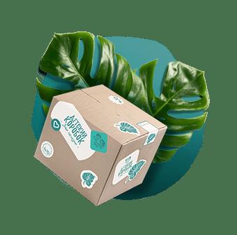 Создание бренда инстаграм блогера